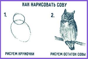 risovanie-karandashom-dly-nachinausih11